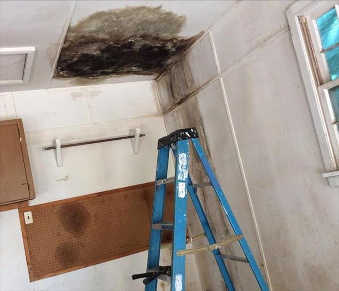 Roof leak causes mold Before